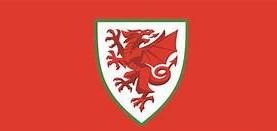 10-man Wales beaten by France