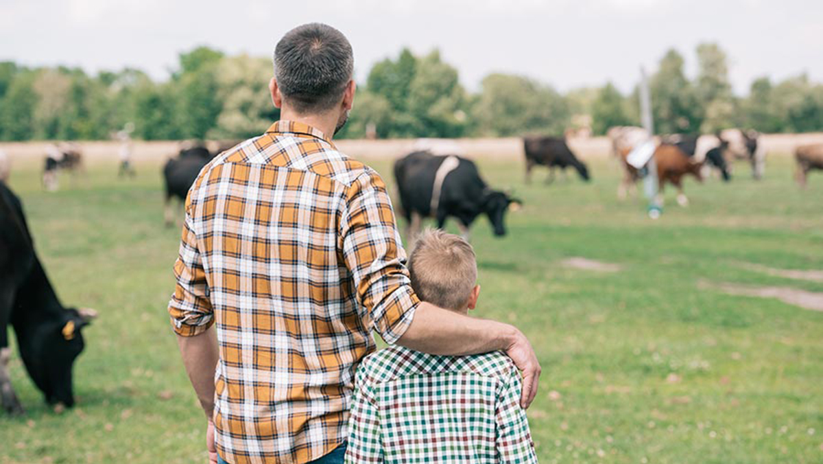 Welsh Government threatens small family farms' futures
