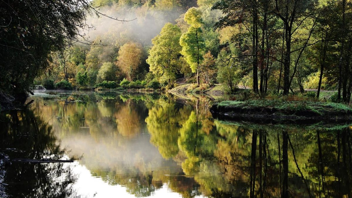 Celebrating amazing green spaces in Wales